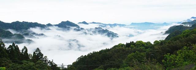 全台絕美雲海景致精選