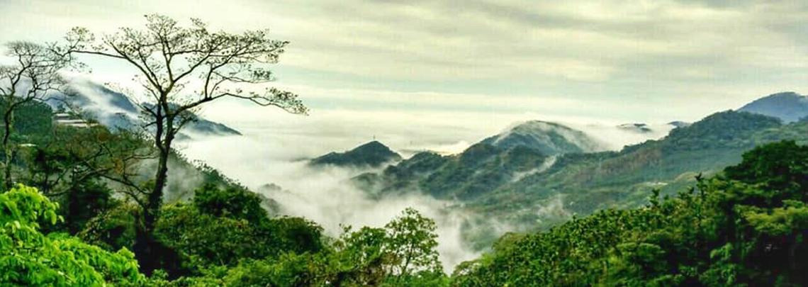 絕美雲海景致 南部精選露營區