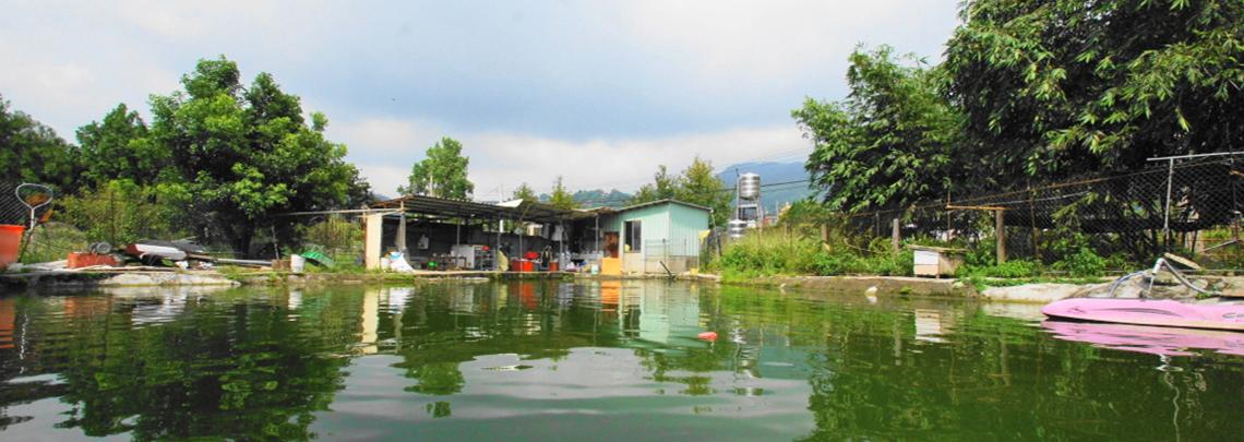 釣魚樂 北部露營區精選