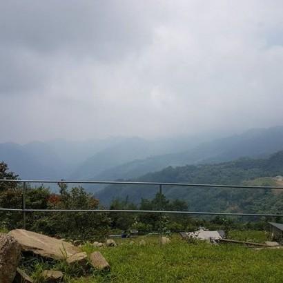 嘉義阿里山 小森林農場露營區 (雲海山莊露營區)