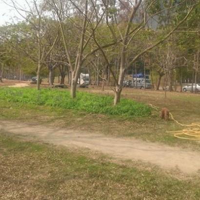 台南楠西 曾文水庫風景區東口野營區