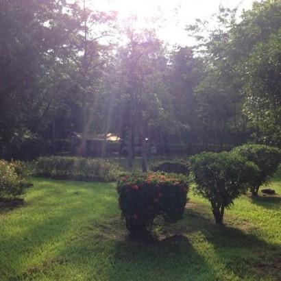 高雄美濃 美綠生態園
