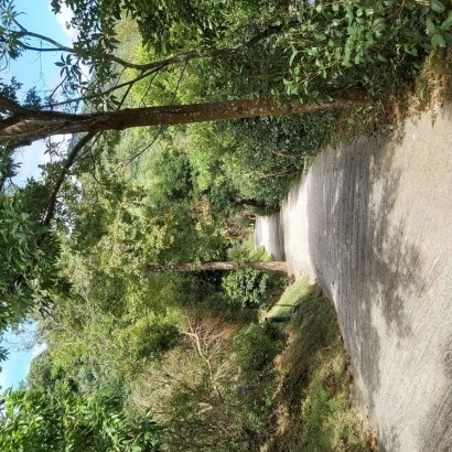 新竹尖石 如果露營區