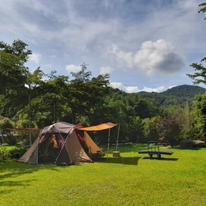 南投埔里 森林蜂味露營區