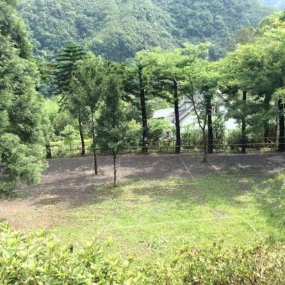新竹尖石 烏米的家露營區