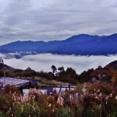 新竹五峰 莫那的家露營區