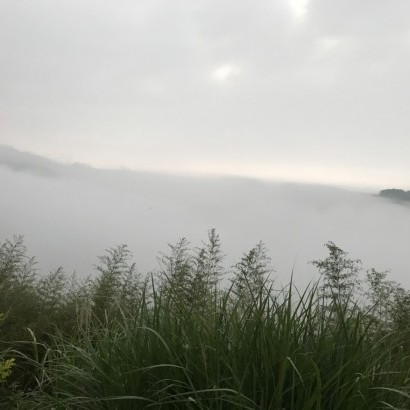 新竹尖石 臻美營地
