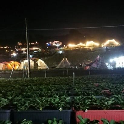 苗栗泰安 快樂露營區