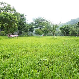 苗栗卓蘭 綠野景山露營地