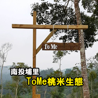 南投埔里 To Me 桃米生態露營區