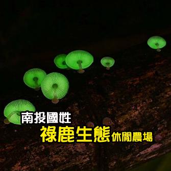 南投國姓 祿鹿生態休閒農場