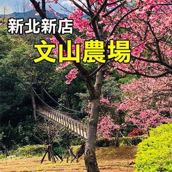 新北新店 文山農場