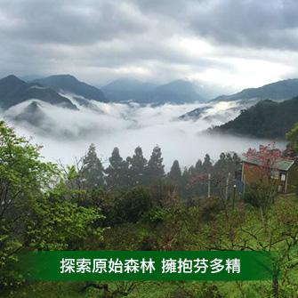 新竹五峰 魯娜的秘境