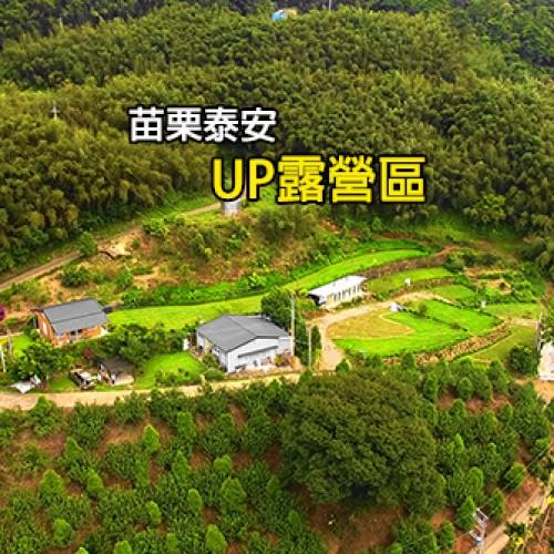 苗栗泰安 UP露營區